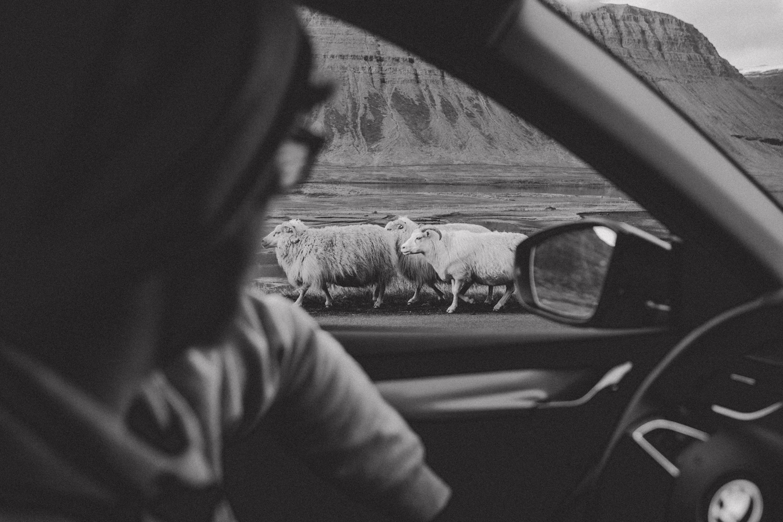 33_maria-und-linda_roadtrip_iceland_westfjords